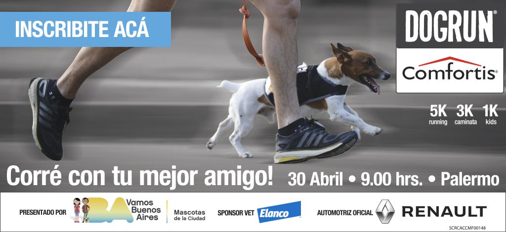 dog-run-2017-runfun
