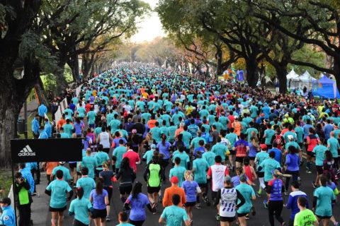 Problemas gastrointestinales durante la carrera: ¿qué estrategias utilizar para disminuirlos?